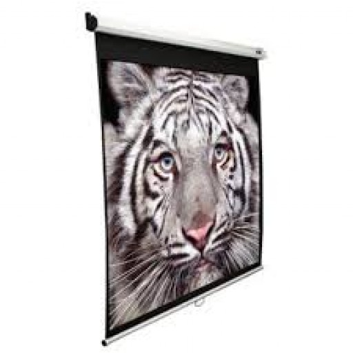 Elite M119XWS1-WHITE Manual Pull Down Projection SCreen