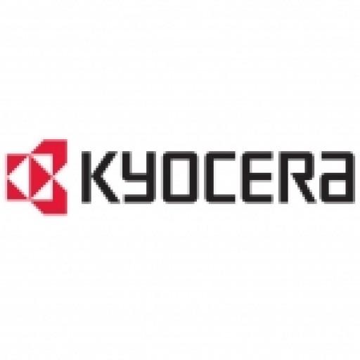 Kyocera 870LM00090, 1024MB Printing Memory Uprgrade