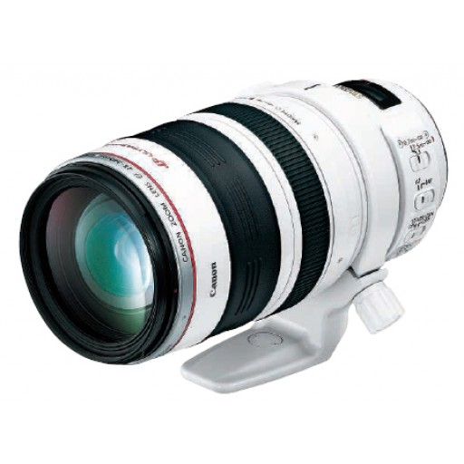 Canon Ef28-300mm f/3.5-5.6 L Is Usm Lens