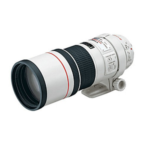 Canon Ef300mm f/4.0 L Is Usm Lens