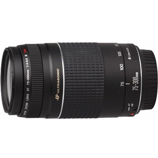 Canon EF75-300mm f/4.0-5.6 USM III Lens