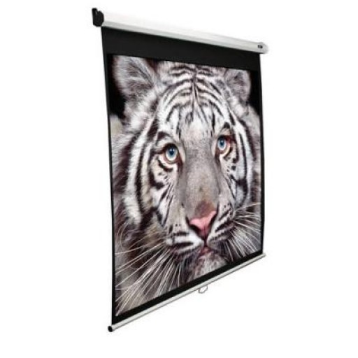 Elite M84NWV-WHITE Manual Pull Down Projection Screen