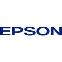 Epson 7012079, Ram Memory 256MB, C9200N, C9200DN- Genuine